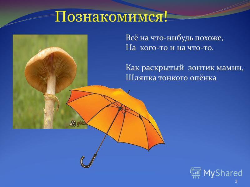 Познакомимся! Всё на что-нибудь похоже, На кого-то и на что-то. Как раскрытый зонтик мамин, Шляпка тонкого опёнка 3