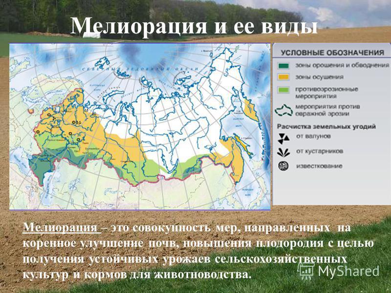 Мелиорация и ее виды Мелиорация – это совокупность мер, направленных на коренное улучшение почв, повышения плодородия с целью получения устойчивых урожаев сельскохозяйственных культур и кормов для животноводства.