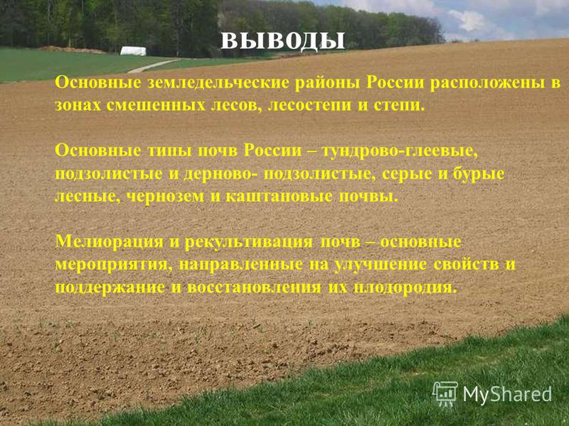 выводы Основные земледельческие районы России расположены в зонах смешенных лесов, лесостепи и степи. Основные типы почв России – тундрово-глеевые, подзолистые и дерново- подзолистые, серые и бурые лесные, чернозем и каштановые почвы. Мелиорация и ре