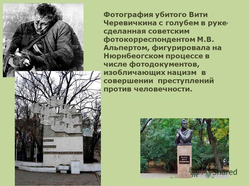 Фотография убитого Вити Черевичкина с голубем в руке, сделанная советским фотокорреспондентом М.В. Альпертом, фигурировала на Нюрнбеогском процессе в числе фотодокументов, изобличающих нацизм в совершении преступлений против человечности.