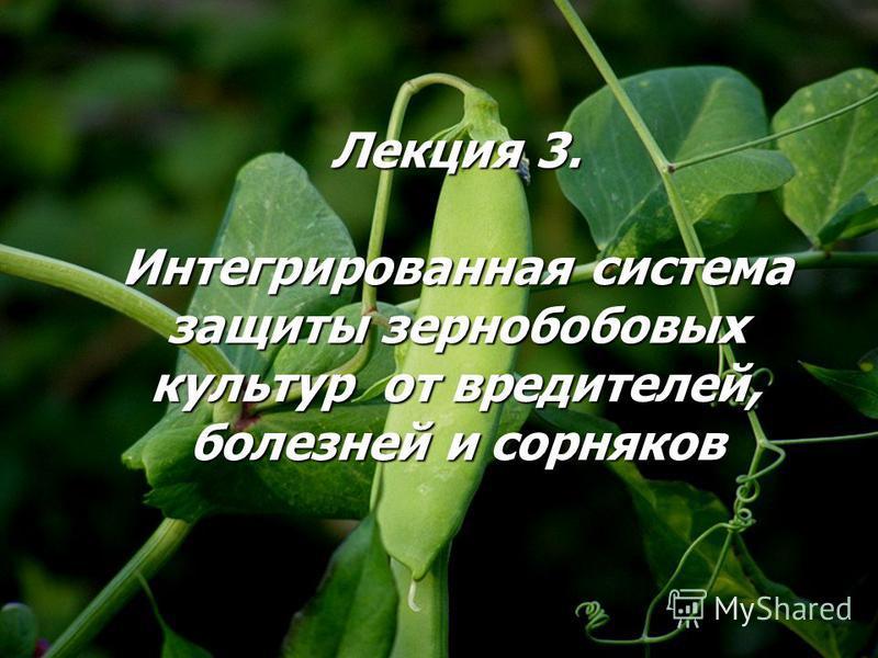 Лекция 3. Интегрированная система защиты зернобобовых культур от вредителей, болезней и сорняков
