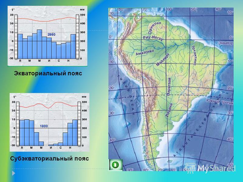 Экваториальный пояс Субэкваториальный пояс