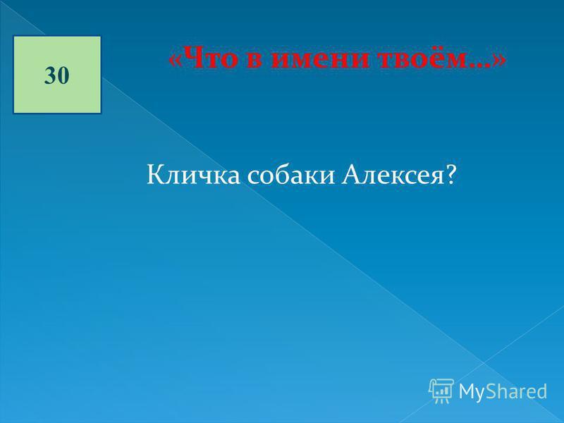 30 «Что в имени твоём…» Кличка собаки Алексея?