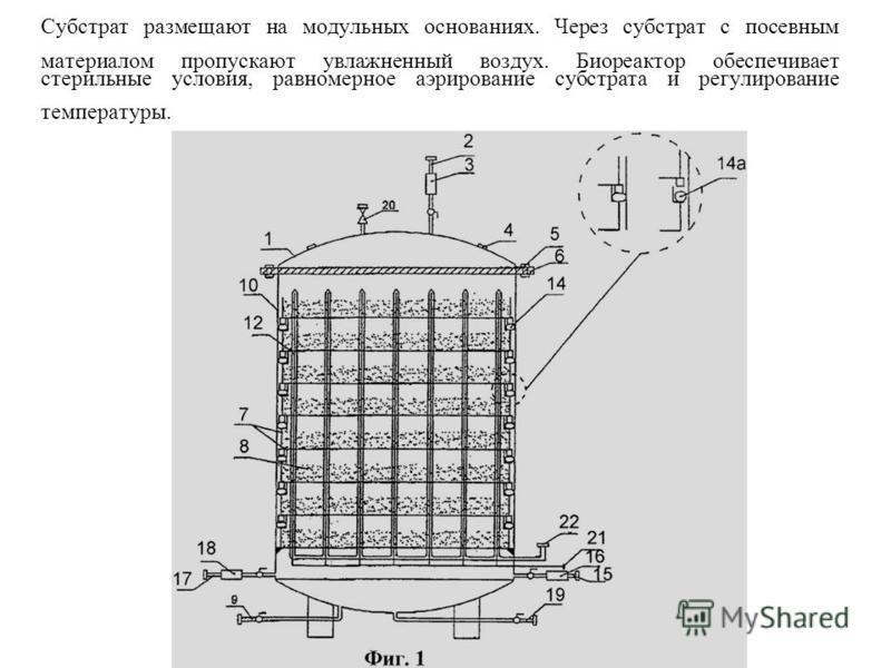 Субстрат размещают на модульных основаниях. Через субстрат с посевным материалом пропускают увлажненный воздух. Биореактор обеспечивает стерильные условия, равномерное аэрирование субстрата и регулирование температуры.