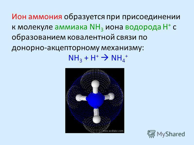 Ион аммония образуется при присоединении к молекуле аммиака NH 3 иона водорода H + с образованием ковалентной связи по донорно-акцепторному механизму: NH 3 + H + NH 4 +
