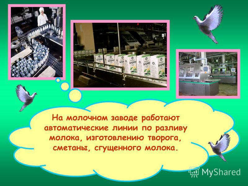 На молочном заводе работают автоматические линии по разливу молока, изготовлению творога, сметаны, сгущенного молока.