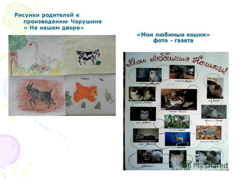 «Мои любимые кошки» фото - газета Рисунки родителей к произведению Чарушина « На нашем дворе»