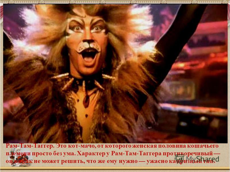 Рам-Там-Таггер. Это кот-мачо, от которого женская половина кошачьего племени просто без ума. Характер у Рам-Там-Таггера противоречивый он никак не может решить, что же ему нужно ужасно капризный тип.