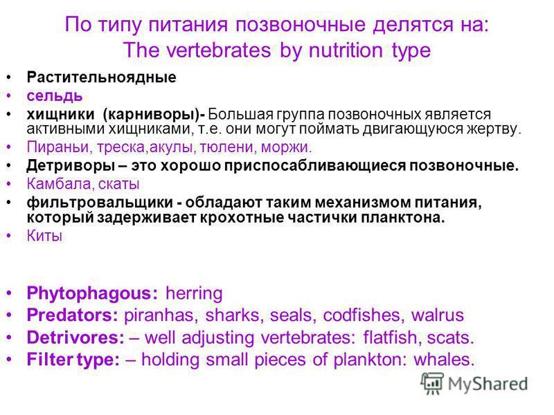 По типу питания беспозвоночные делятся на: The invertebrates by nutrition type: Охотники - Большая группа беспозвоночных является активными хищниками, т.е. они могут поймать двигающуюся жертву. Большие крабы, омары, большие одностворчатые моллюски, о