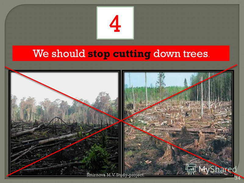 We should stop cutting down trees. 4 34 Smirnova M.V. Study-project.