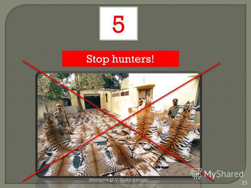 Stop hunters! 5 35 Smirnova M.V. Study-project.