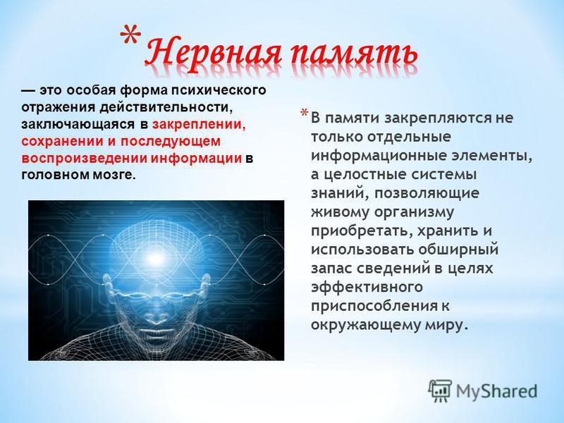 * В памяти закрепляются не только отдельные информационные элементы, а целостные системы знаний, позволяющие живому организму приобретать, хранить и использовать обширный запас сведений в целях эффективного приспособления к окружающему миру. это особ