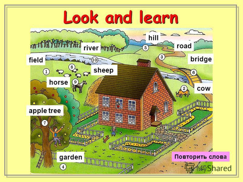 field cow road garden hill bridge apple tree sheep horse river Look and learn Повторить слова