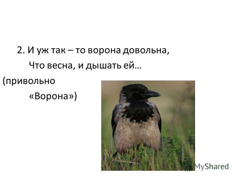 2. И уж так – то ворона довольна, Что весна, и дышать ей… (привольно «Ворона»)