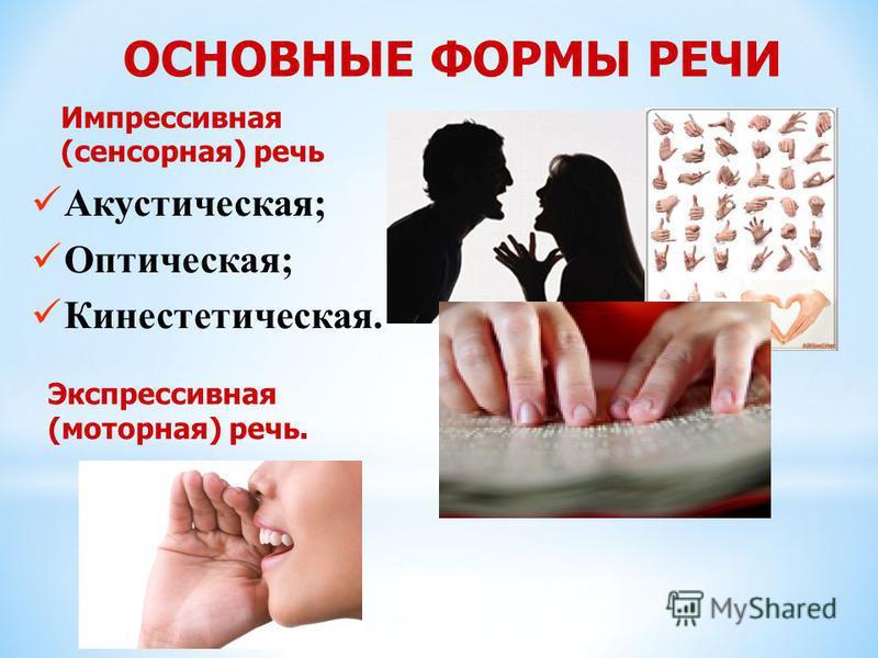 ОСНОВНЫЕ ФОРМЫ РЕЧИ Акустическая; Оптическая; Кинестетическая. Экспрессивная (моторная) речь. Импрессивная (сенсорная) речь