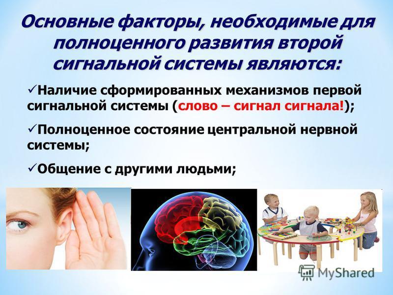 Основные факторы, необходимые для полноценного развития второй сигнальной системы являются: Наличие сформированных механизмов первой сигнальной системы (слово – сигнал сигнала!); Полноценное состояние центральной нервной системы; Общение с другими лю