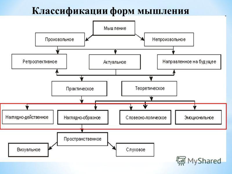 Классификации форм мышления