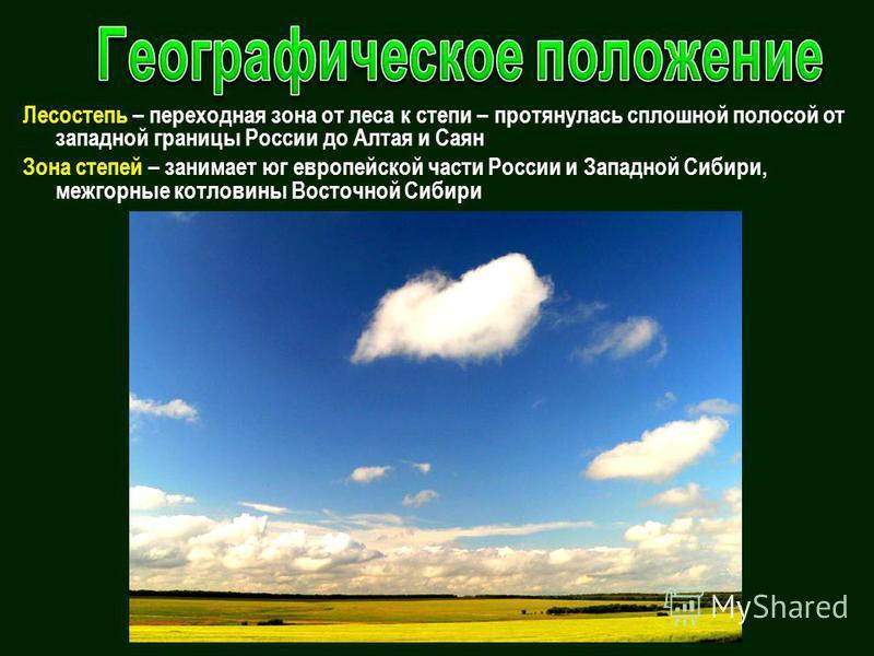 Лесостепь – переходная зона от леса к степи – протянулась сплошной полосой от западной границы России до Алтая и Саян Зона степей – занимает юг европейской части России и Западной Сибири, межгорные котловины Восточной Сибири