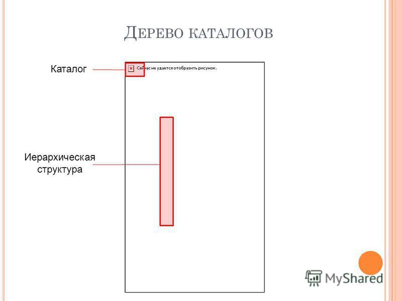 Каталог Иерархическая структура Д ЕРЕВО КАТАЛОГОВ