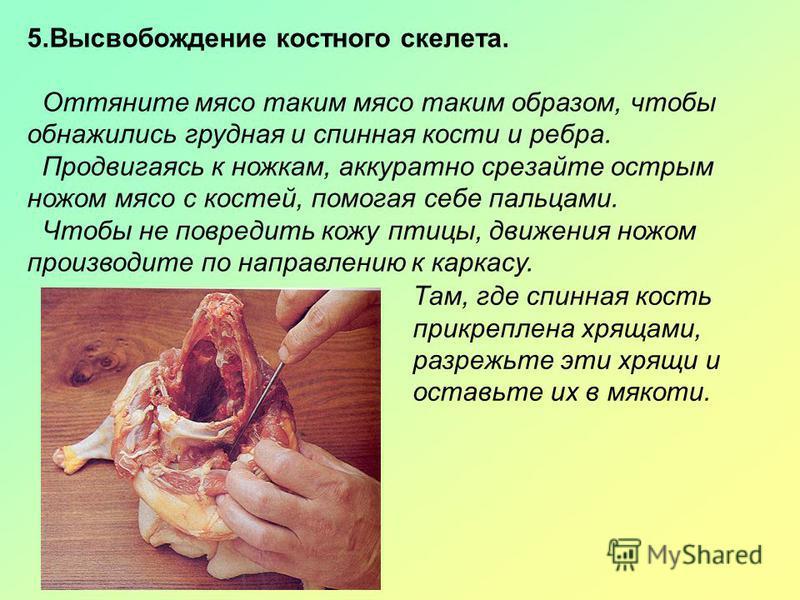 5. Высвобождение костного скелета. Оттяните мясо таким мясо таким образом, чтобы обнажились грудная и спинная кости и ребра. Продвигаясь к ножкам, аккуратно срезайте острым ножом мясо с костей, помогая себе пальцами. Чтобы не повредить кожу птицы, дв