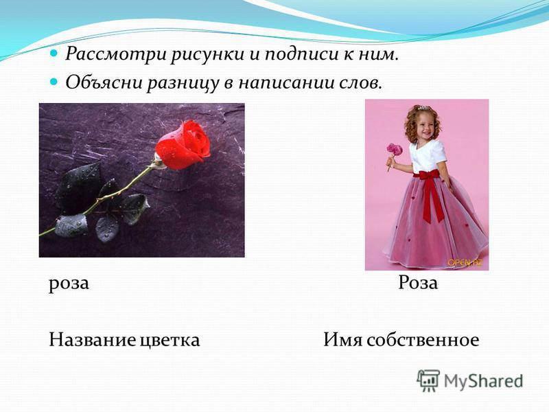 Рассмотри рисунки и подписи к ним. Объясни разницу в написании слов. роза Роза Название цветка Имя собственное