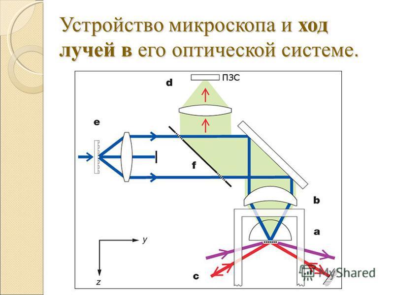 Устройство микроскопа и ход лучей в его оптической системе.