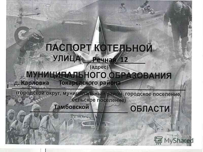 Речная 12 д. Карловка Токаревского района Тамбовской
