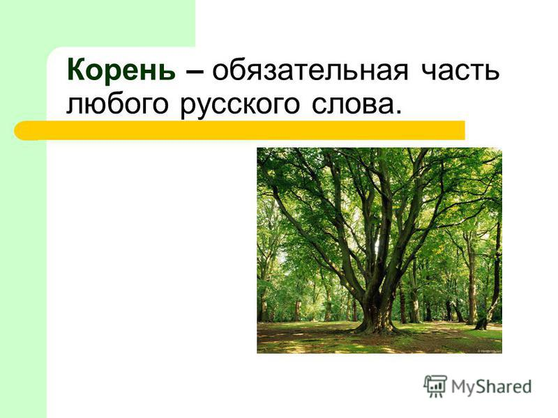 Корень – обязателльная часть любого русского слова.