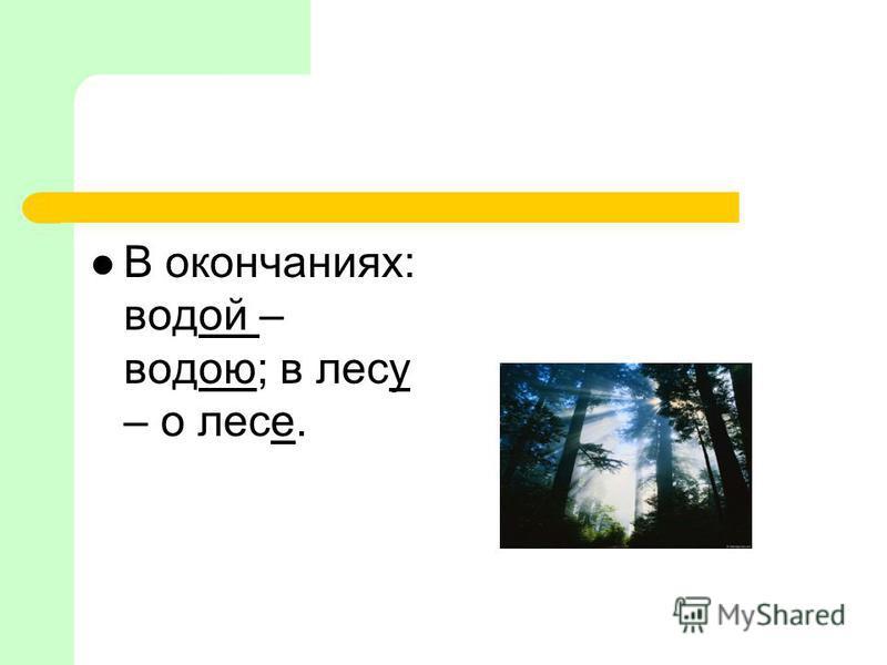 В окончаниях: водой – водою; в лесу – о лесе.