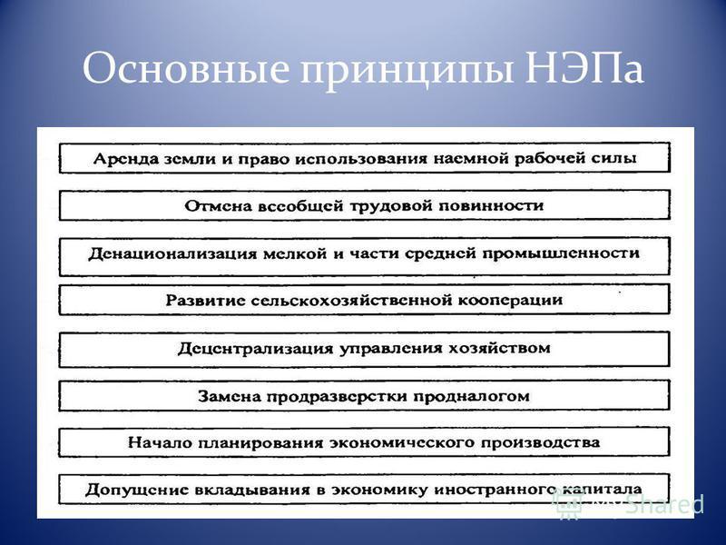 Основные принципы НЭПа
