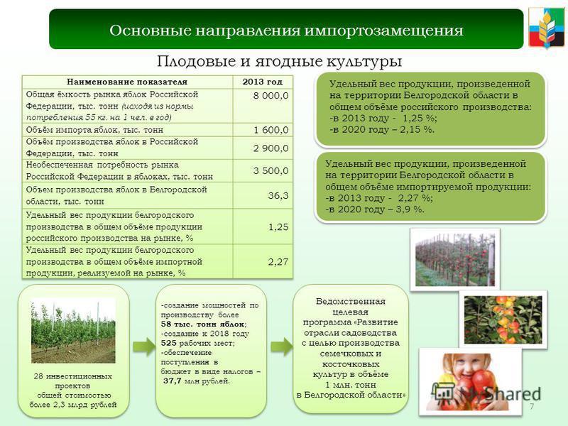7 Плодовые и ягодные культуры Основные направления импортозамещения Удельный вес продукции, произведенной на территории Белгородской области в общем объёме российского производства: -в 2013 году - 1,25 %; -в 2020 году – 2,15 %. Удельный вес продукции