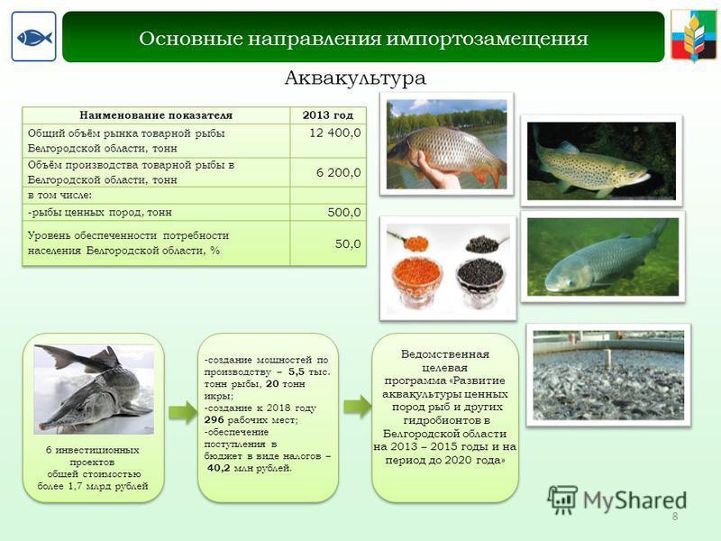 8 Аквакультура Основные направления импортозамещения 6 инвестиционных проектов общей стоимостью более 1,7 млрд рублей -создание мощностей по производству – 5,5 тыс. тонн рыбы, 20 тонн икры; -создание к 2018 году 296 рабочих мест; -обеспечение поступл