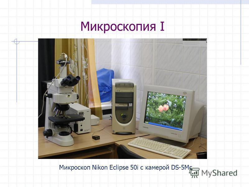 Микроскопия I Микроскоп Nikon Eclipse 50i с камерой DS-5Mc