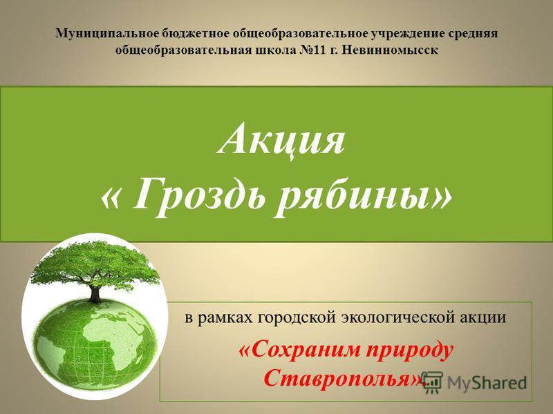 Акция « Гроздь рябины» в рамках городской экологической акции «Сохраним природу Ставрополья». Муниципальное бюджетное общеобразовательное учреждение средняя общеобразовательная школа 11 г. Невинномысск