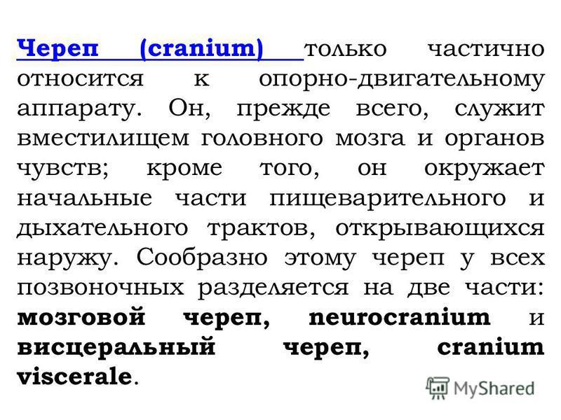 Череп (cranium) Череп (cranium) только частично относится к опорно-двигательному аппарату. Он, прежде всего, служит вместилищем головного мозга и органов чувств; кроме того, он окружает начальные части пищеварительного и дыхательного трактов, открыва
