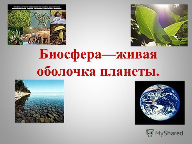 Биосфераживая оболочка планеты.