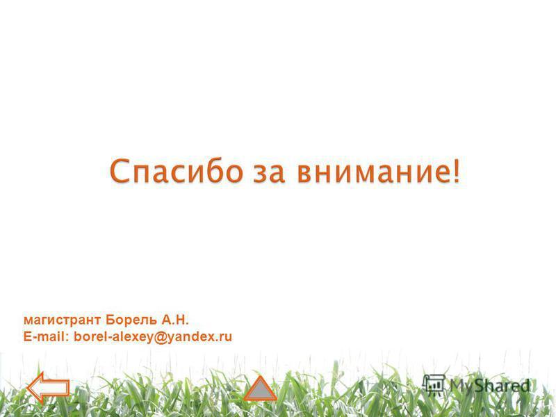 магистрант Борель А.Н. E-mail: borel-alexey@yandex.ru
