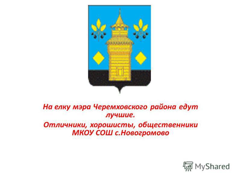 На елку мэра Черемховского района едут лучшие. Отличники, хорошисты, общественники МКОУ СОШ с.Новогромово