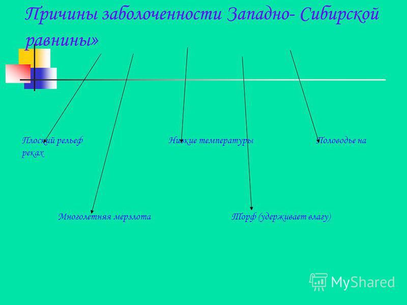 Причины заболоченности Западно- Сибирской равнины » Плоский рельеф Низкие температуры Половодье на реках Многолетняя мерзлота Торф (удерживает влагу)