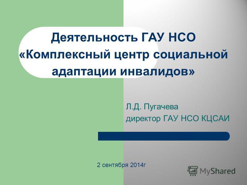 Деятельность ГАУ НСО «Комплексный центр социальной адаптации инвалидов» Л.Д. Пугачева директор ГАУ НСО КЦСАИ 2 сентября 2014 г