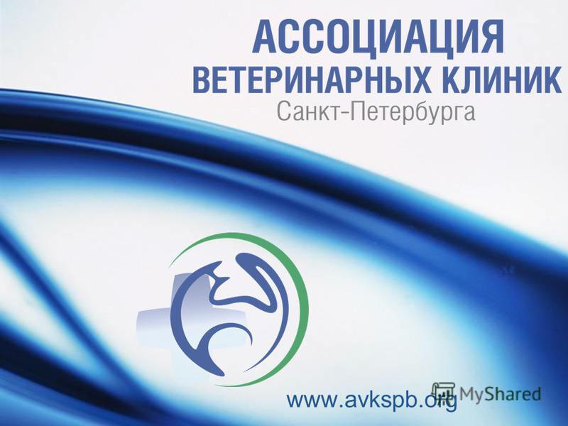 www.avkspb.org