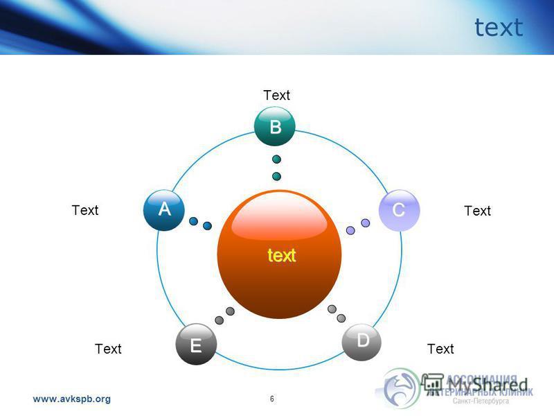 www.avkspb.org text 6 text B E C D A Text