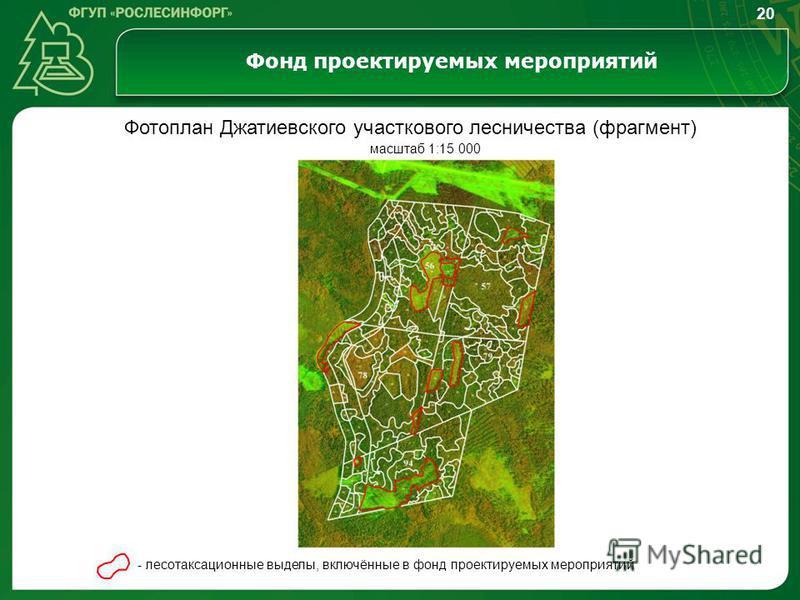 Фонд проектируемых мероприятий Фотоплан Джатиевского участкового лесничества (фрагмент) - лесотаксационные выделы, включённые в фонд проектируемых мероприятий масштаб 1:15 000 20