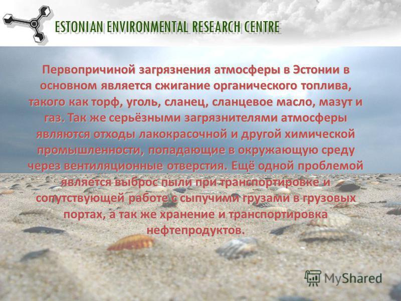 Первопричиной загрязнения атмосферы в Эстонии в основном является сжигание органического топлива, такого как торф, уголь, сланец, сланцевое масло, мазут и газ. Так же серьёзными загрязнителями атмосферы являются отходы лакокрасочной и другой химическ