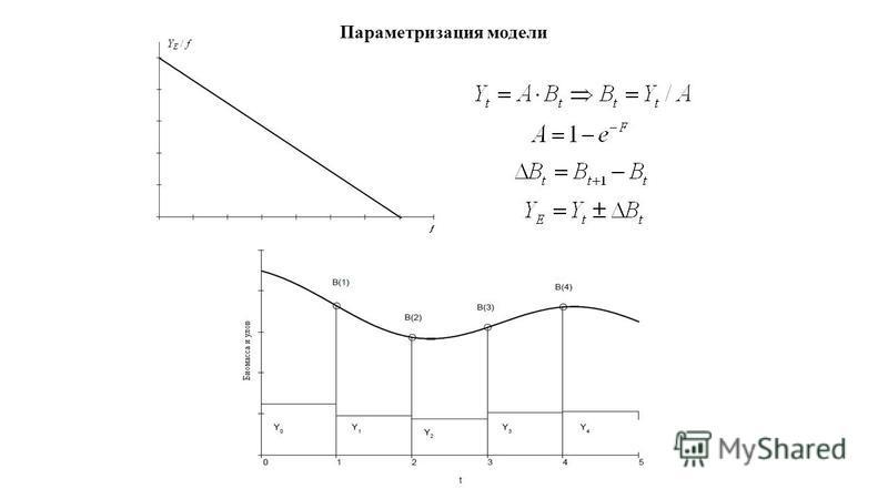 Параметризация модели
