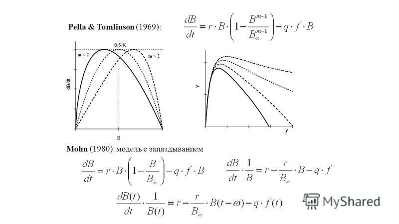 Pella & Tomlinson (1969): Mohn (1980): модель с запаздыванием