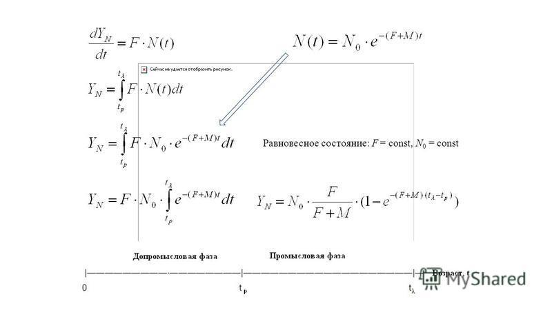 Равновесное состояние: F = const, N 0 = const