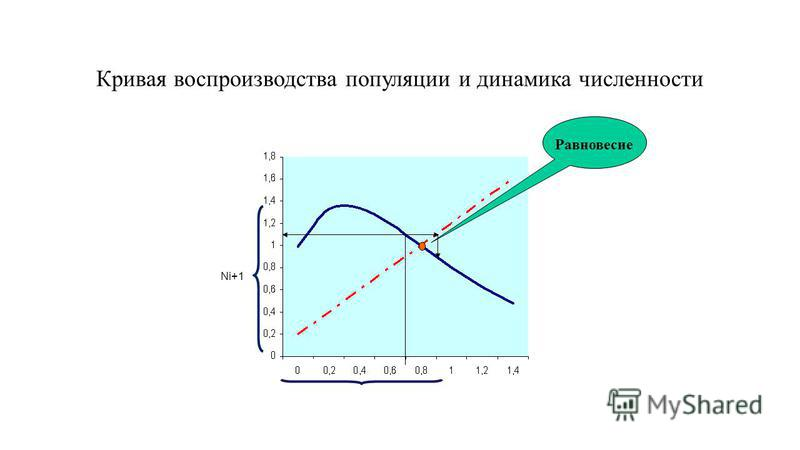 Кривая воспроизводства популяции и динамика численности Равновесие Ni+1