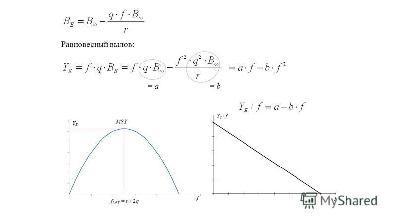 Равновесный вылов: = a = b f MSY = r / 2q MSY Y E / f