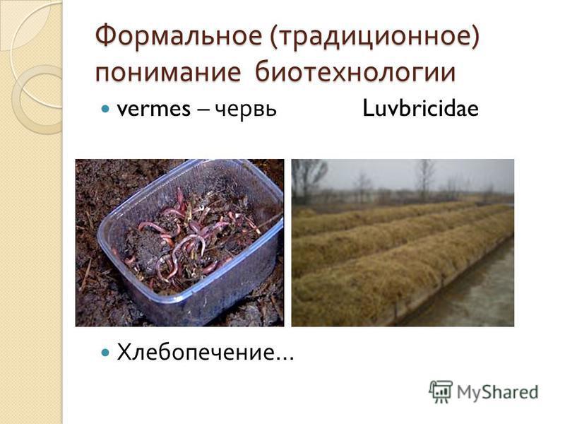 Формальное ( традиционное ) понимание биотехнологии vermes – червь Luvbricidae Хлебопечение …